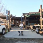 穂高ドッグラン&カフェN36°と北本グリーンクロスと星野珈琲を巡るポカポカと暖かい土曜日の午後