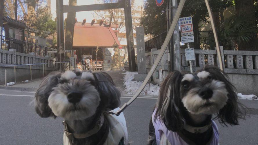 日本で唯一の気象神社に行ってみた!