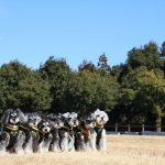 髭犬祭開催前の全体最終ミーティング完了!