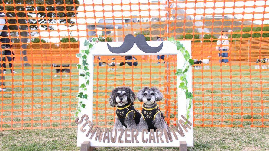 ご愛犬の写真持って行ってくださいませ~★250人以上のみなさんと楽しんだ髭犬祭おつかれさまラン会!