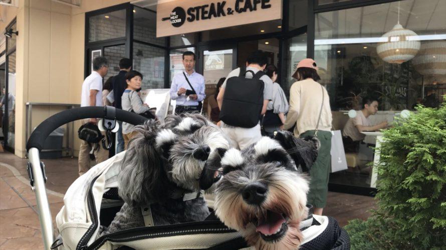 幕張で愛犬と一緒に楽しむステーキランチはザ ミートロッカーで!