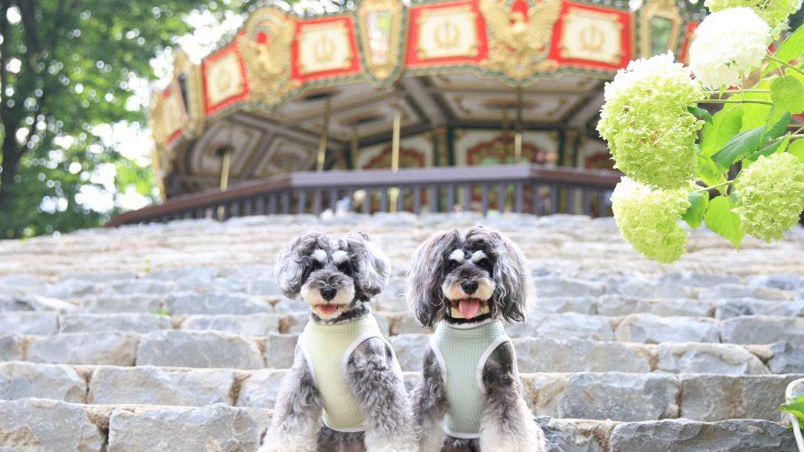 心の清い方だけが見えるマーブルとイヴがご案内する『みちのくドッグフェス』会場のみちのく公園ツアー。そして、本日20時よりDOG SUP受付開始となります!!