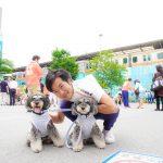 7月21日の参議院選挙の東京選挙区は おときた駿 さんへ投票してみます