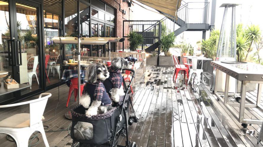 シュナホリックな髭犬祭ステージチームがグレインホリックなPie Holicでミーテイング!